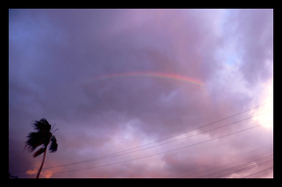 Rainbowtop_2